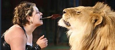 Társkeresés és oroszlánszelídítés